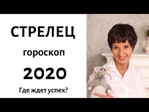 СТРЕЛЕЦ гороскоп на 2020 год. ГДЕ ЖДЕТ УСПЕХ? / гадание на 2020 год от Елена Саламандра